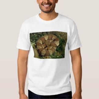 camiseta para hombre amplio-congregada de la playera