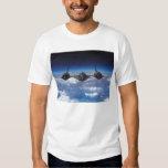 Camiseta para hombre del mirlo SR-71 Playera