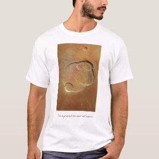Camiseta paranoica