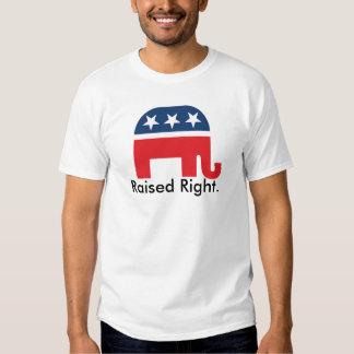 Camiseta patriótica republicana derecha aumentada camisas