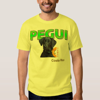Camiseta PEGUI Playeras