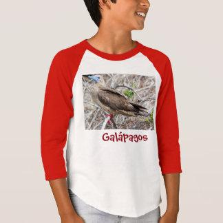 Camiseta Piquero de Patas Rojas,  Isla Galápagos