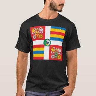 Camiseta pontifical de la bandera del guardia