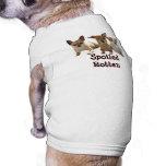 Camiseta putrefacta estropeada chihuahua del perro camisetas de perro