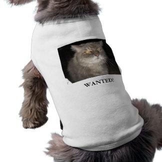 Camiseta querida del perro playera sin mangas para perro