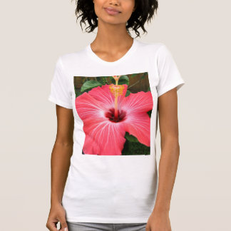 Camiseta rosada del hibisco