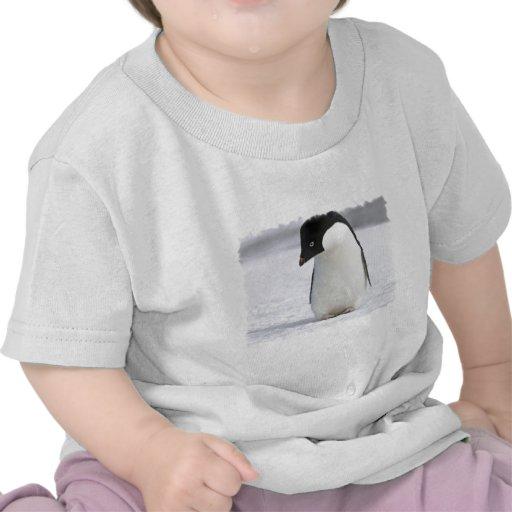 Camiseta sola del bebé del pingüino