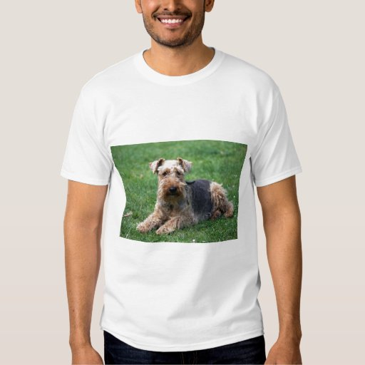 Camiseta unisex del perro del terrier galés, idea playera