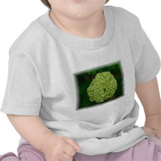 Camiseta verde del bebé del Hydrangea
