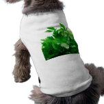 Camiseta verde del perro del perejil prenda mascota