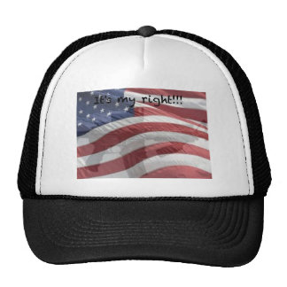 Camisetas, cojines de ratón, tazas, etc. patriótic gorro