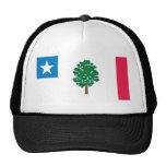 Camisetas de la bandera de Mississippi (1861) Gorras De Camionero