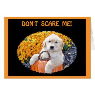 Camisetas de la bruja del perrito de Halloween y Tarjeta De Felicitación