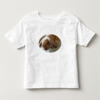 Camisetas espigado del conejo de Holanda Lop Camisas