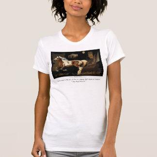 Camisetas históricas del caballo de Barb del