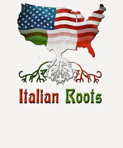 Camisetas italianas americanas de las señoras playera