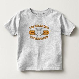 Camisetas ligeras (más estilos y colores playera