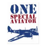 Camisetas militares del piloto de la aviación del  postales