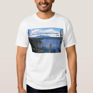 Camisetas: Para tener éxito en vida, usted Polera