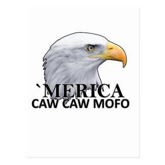 Camisetas png del humor del águila del CAW del CA Tarjeta Postal