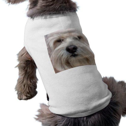 Camisetas sin mangas de Lasa Apso Ropa De Mascota