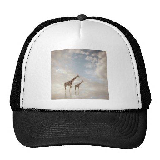 Camisetas surrealistas gorras