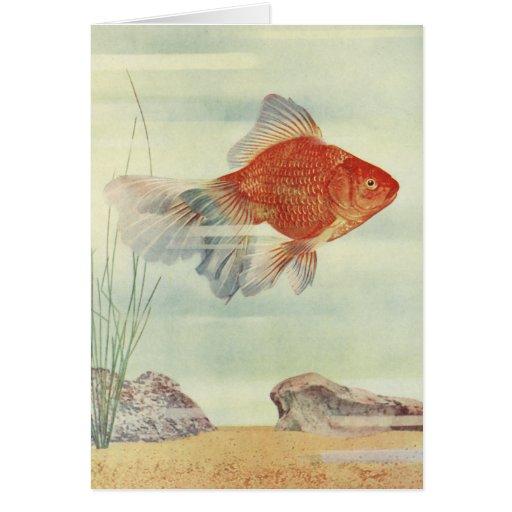 ¡Camisetas, tarjetas y regalos del Goldfish!