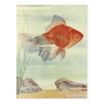 ¡Camisetas, tarjetas y regalos del Goldfish! Postales