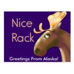 ¡Camisetas y regalos de Alaska! Postal