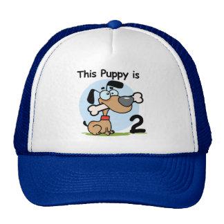Camisetas y regalos de este cumpleaños del perrito gorro de camionero