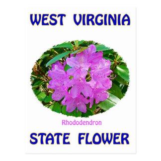 Camisetas y regalos de la flor de estado de tarjetas postales