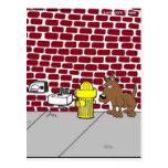 Camisetas y regalos divertidos del dibujo animado  tarjeta postal
