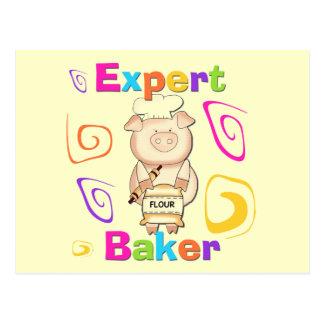 Camisetas y regalos expertos del panadero del postal