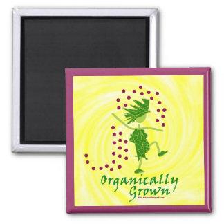 Camisetas y regalos orgánico crecidos iman de frigorífico