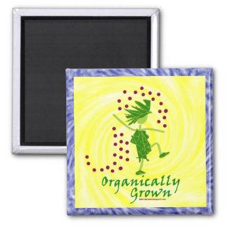 Camisetas y regalos orgánico crecidos imán