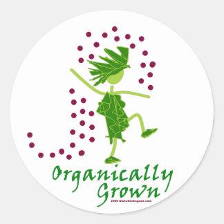 Camisetas y regalos orgánico crecidos etiquetas redondas