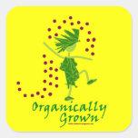 Camisetas y regalos orgánico crecidos calcomanías cuadradass personalizadas