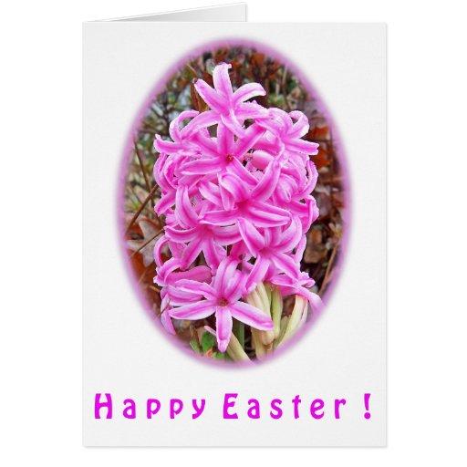 Camisetas y regalos rosados felices del jacinto de tarjeta de felicitación