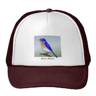 Camisetas y ropa del este del Bluebird rev.2.0 Gorras De Camionero
