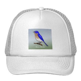 Camisetas y ropa del este del Bluebird rev.2.0 Gorro De Camionero