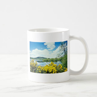 Camlough Lough, County Down, Ireland  flowers Classic White Coffee Mug