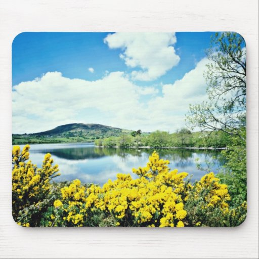 Camlough Lough, County Down, Ireland  flowers Mouse Pad