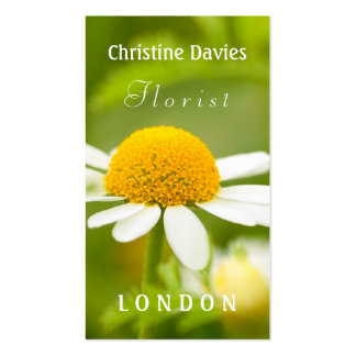 Cammomile macro photograhy, florist business card