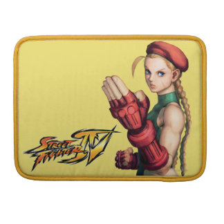 Cammy With Hand Up Sleeves For MacBook Pro