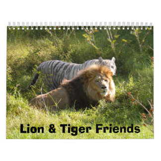 CamNzabu014, Lion & Tiger Friends Calendar