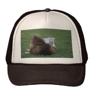 CamNzabu028 Trucker Hat
