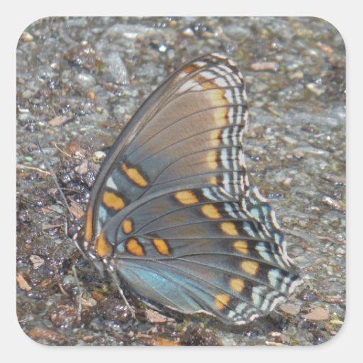 Camo azul y anaranjado gris de la mariposa calcomanía cuadradas personalizadas