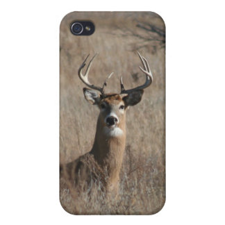 Camo Buck Whitetail Deer iPhone 4 Case