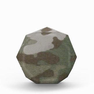 camo Camouflage Pattern Award