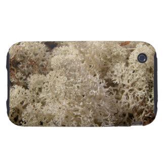 CAMO Caribou Moss iPhone 3 Tough Case
